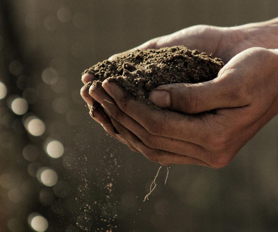 Natjecaj-za-razvoj-polj-proizvodnje-i-promociju-polj-proizvoda-u-2019-godini